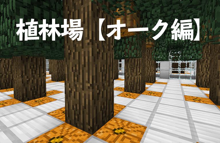 植林場【オーク(樫の木)編】