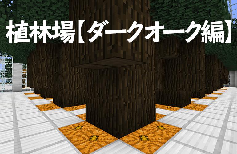 植林場【ダークオーク編】
