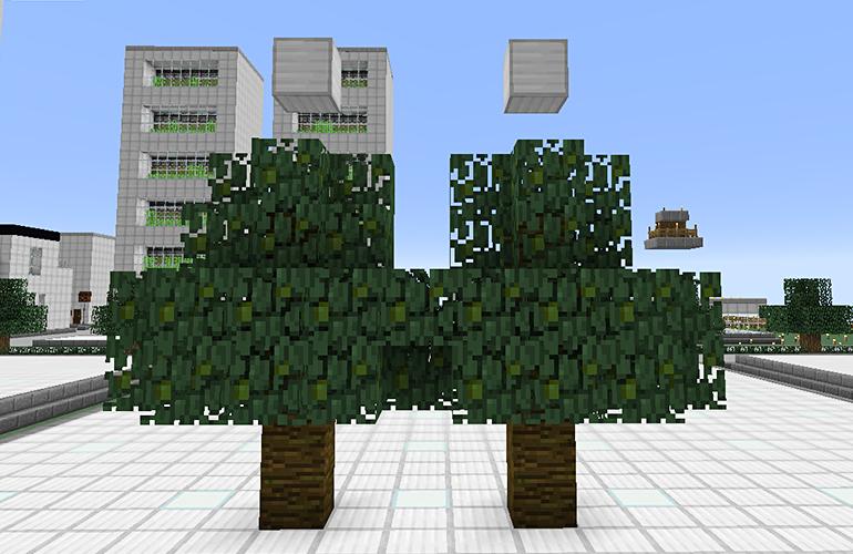 ジャングルの木の制限ブロック・8マス目