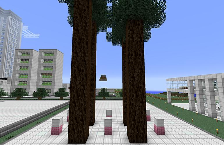マツの巨木
